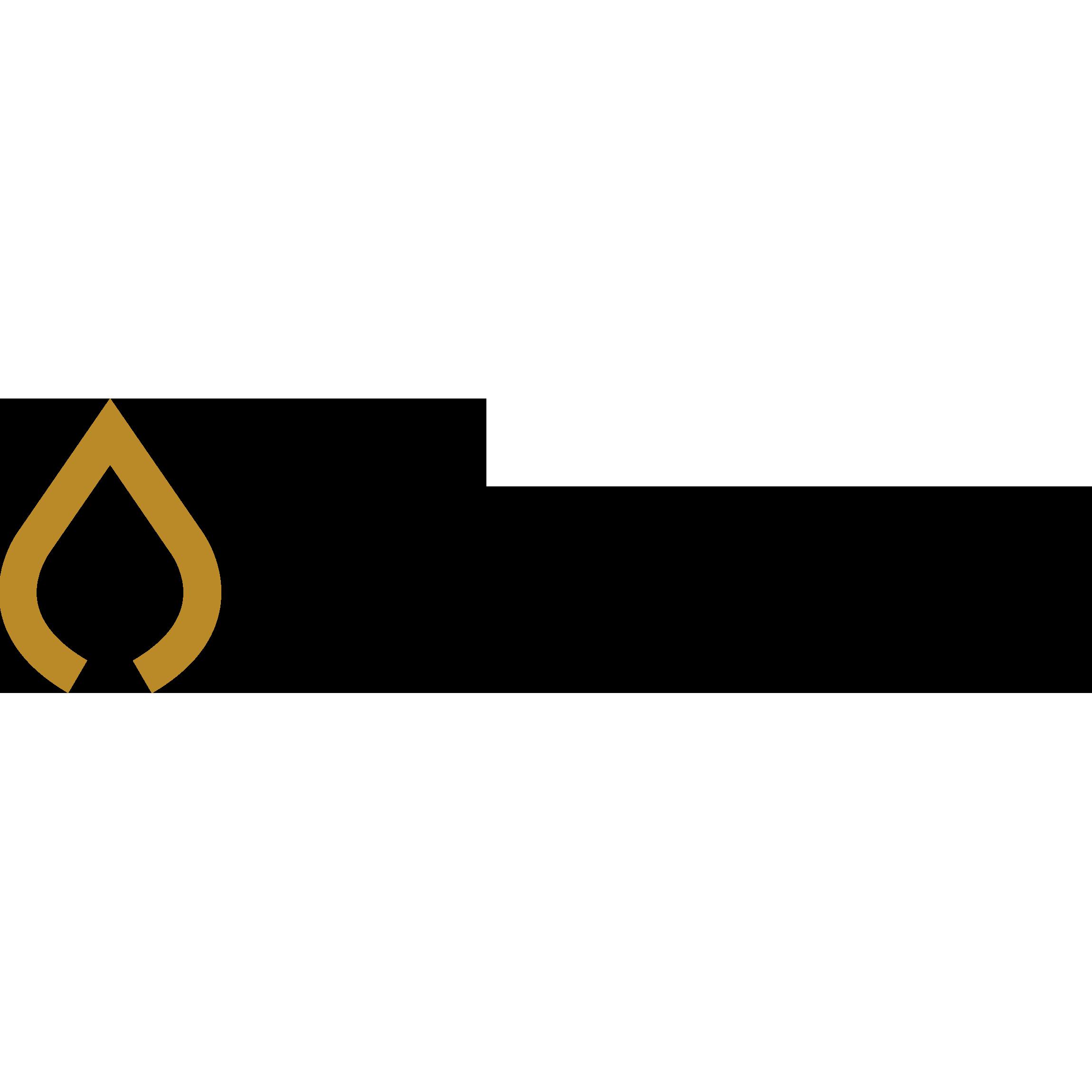 RealFires logo